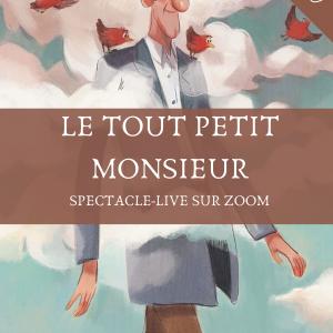 Spectacle-live-sur-zoom